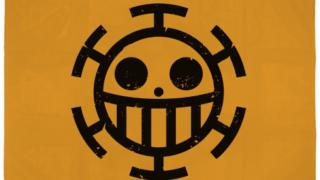 トラファルガー・ロー率いるハートの海賊団