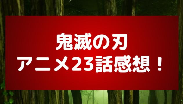 アニメ「鬼滅の刃」23話の感想!禰豆子の意地と忍耐