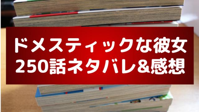 ドメカノ(ドメスティックな彼女)250話のネタバレ感想!夏生が瑠衣と再会する?